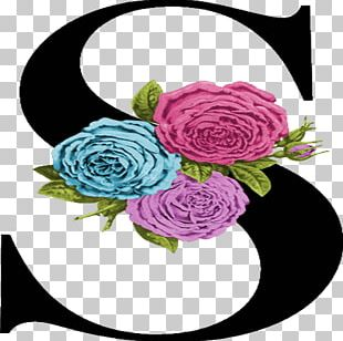 Garden Roses Floral Design Cut Flowers Centifolia Roses PNG