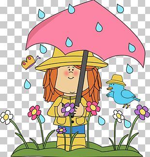 Spring Rain PNG