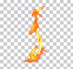 Fire Flame Computer File PNG