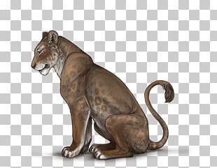 Lion Black Panther Cheetah Animal Cat PNG