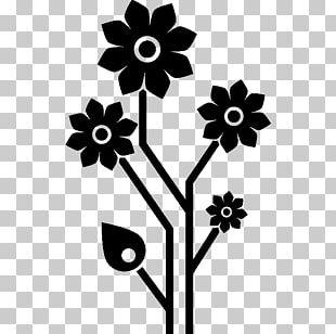 Petal Floral Design Leaf Cut Flowers PNG
