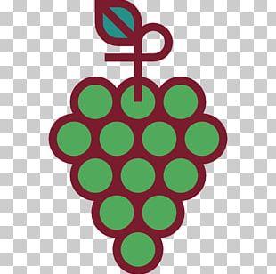 Organic Food Vegetarian Cuisine Grape Fruit Berry PNG
