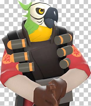 Macaw Parrot Beak Toucan Team Fortress 2 PNG