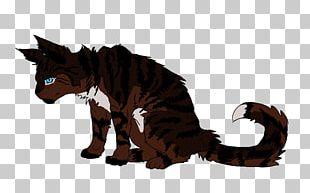 Cat Warriors Hawkfrost Firestar Ivypool PNG