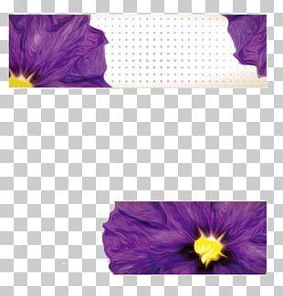 Petal Violet Banner Flower PNG