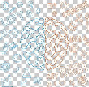 Lateralization Of Brain Function Drawing Human Brain Cerebral Hemisphere PNG