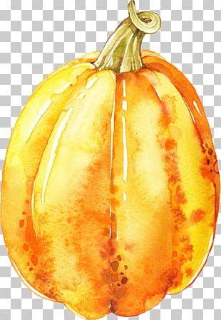 Pumpkin Calabaza Vegetarian Cuisine Gourd Winter Squash PNG