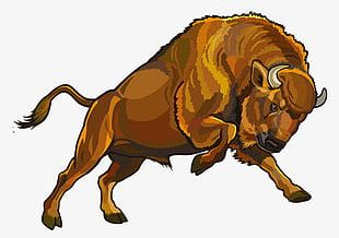 Painted Bison PNG