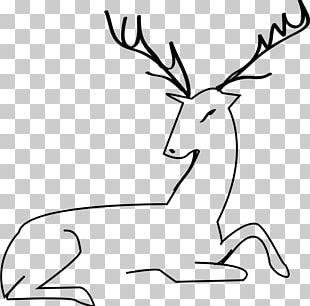 White-tailed Deer Moose Reindeer Elk PNG