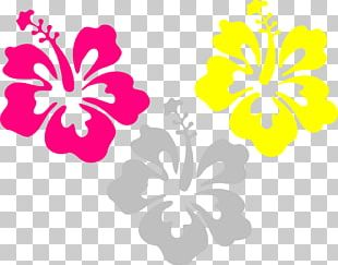 Hawaiian Hibiscus Stencil Flower PNG