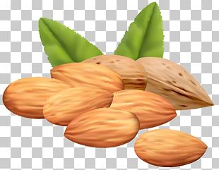 Almond Stock Photography PNG