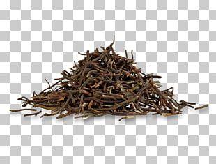 Sencha Keemun Assam Tea Darjeeling Tea Lapsang Souchong PNG