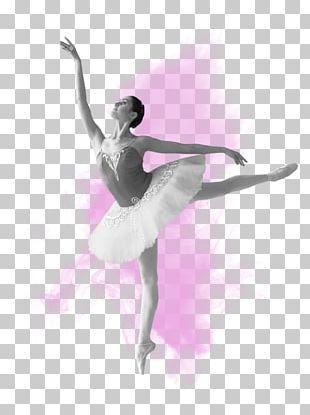 Ballet Dancer Russian Ballet Tutu PNG