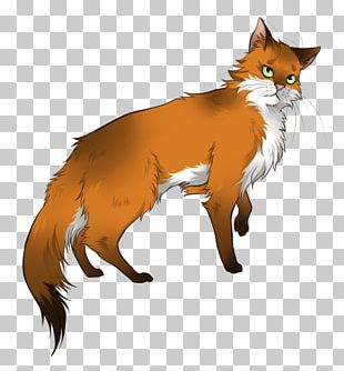 Whiskers Cat Foxheart Drawing PNG