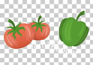 Tomato Bell Pepper Paprika PNG