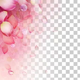 Women's Day Background PNG