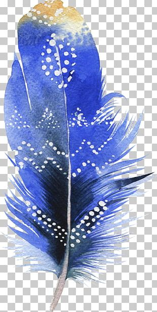 Bird Feather Watercolor Painting Drawing PNG