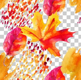 Autumn Maple Leaf Watercolor Painting PNG