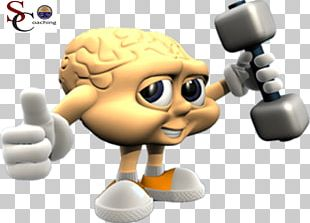 Cognitive Training Human Brain Learning Memory PNG