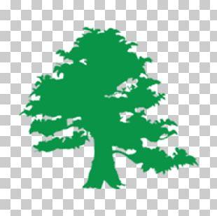 Irish People Saint Patrick's Day Ireland Four-leaf Clover Toast PNG