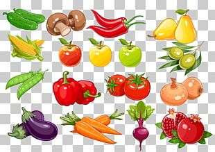 Bell Pepper Fruit Vegetable Vegetarian Cuisine Food PNG