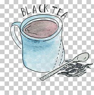 White Tea Green Tea Oolong Black Tea PNG