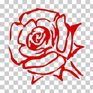 Rose Cut Flowers Art PNG