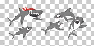 Marine Mammal Marine Biology PNG