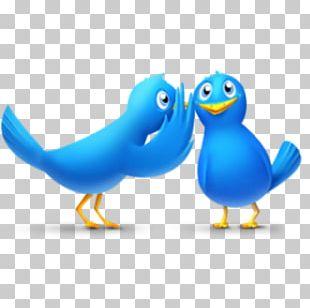 Social Media Marketing Gossip Computer Icons PNG