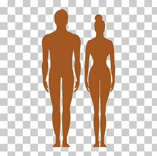 Human Body Silhouette PNG