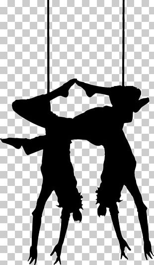Trapeze Circus Artist PNG