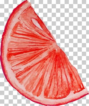 Blood Orange Fruit PNG