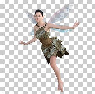 Fairy Fairie Festival Magic Harvest Elf Tela PNG