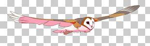 Beak Bird Of Prey Wing Feather PNG