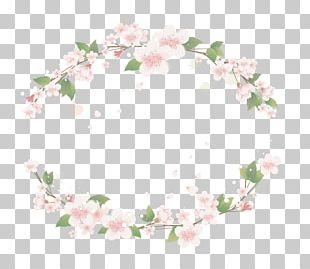 Floral Design Symmetry Textile Flower Pattern PNG