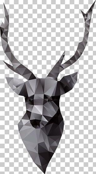 Goat Paper Euclidean PNG