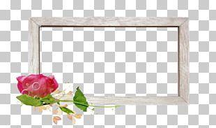 Garden Roses Petal Business Cluster PNG