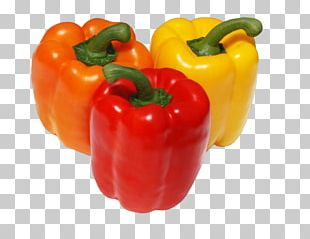 Chili Pepper Cayenne Pepper Friggitello Yellow Pepper Red Bell Pepper PNG
