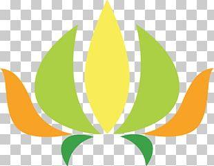 Nelumbo Nucifera National Symbols Of India Pattern PNG