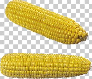 Corn On The Cob Maize Vegetable Grauds PNG