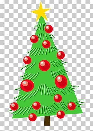 Christmas Tree Christmas Ornament Fir Illustration PNG