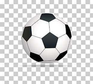 Sports Equipment Tennis Ball PNG