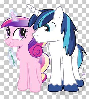 Twilight Sparkle Pony Princess Cadance Rarity Rainbow Dash