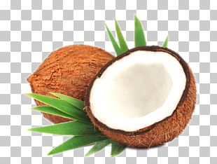 Coconut Milk Coconut Oil Leaf Stock Photography PNG