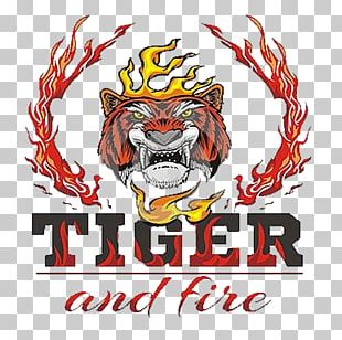 Tiger Fire Flame Drawing PNG