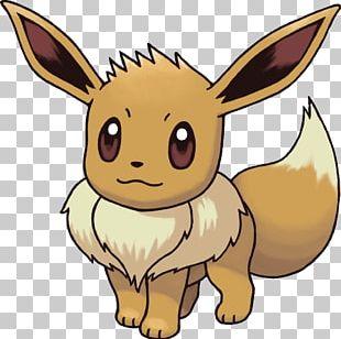 Eevee Pokemon PNG