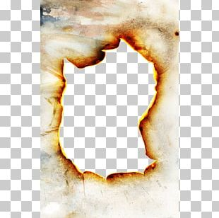 Paper Combustion Flame Fire PNG