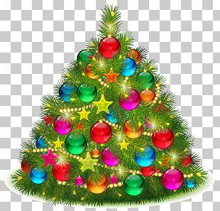 Christmas Tree Christmas Day PNG