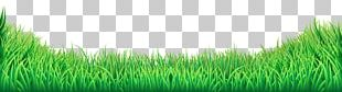 Lawn PNG