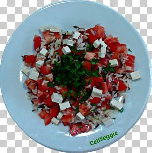 Salad Pico De Gallo Vegetarian Cuisine Recipe Vegetable PNG